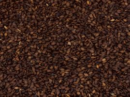 big_brown_sesame_seeds